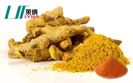 姜黄提取物
