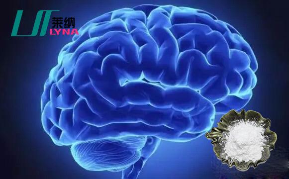 神经酸研究现状及应用前景