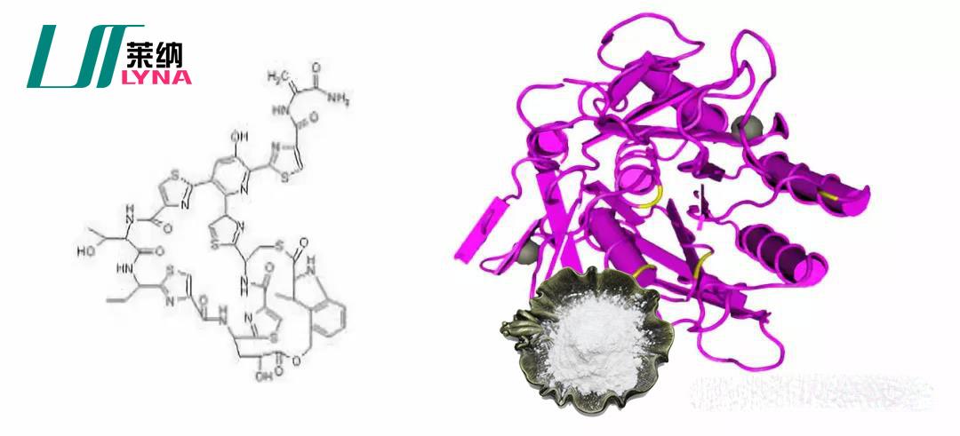 纳豆提取物分子结构