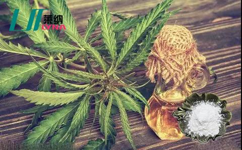 工业大麻提取物大麻二酚CBD产业情况