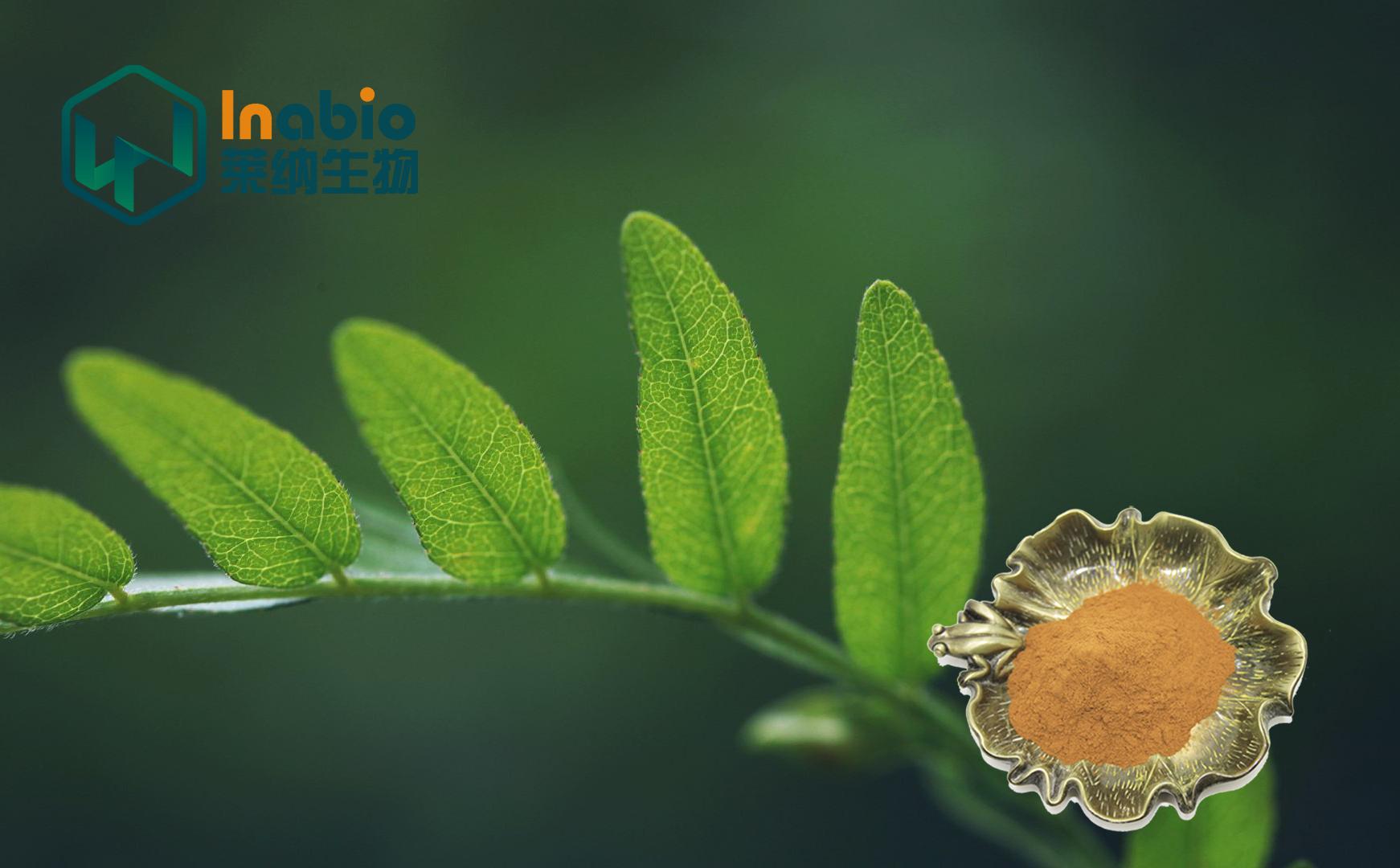 2019年植物提取物团体标准立项