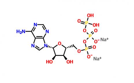 三磷酸腺苷二钠ATP