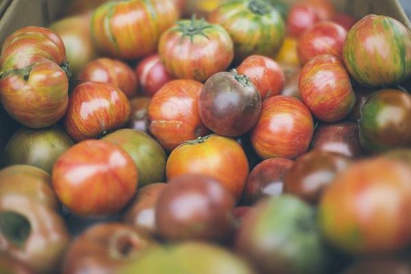 植物中的天然色素仅仅是为了好看吗?